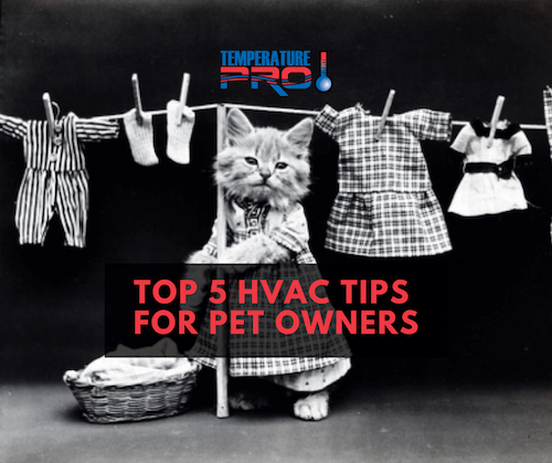 hvac tips for charleston pet owners